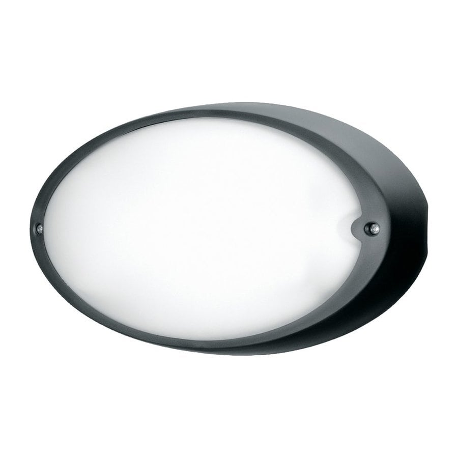 Eurofase Airy 6.5-in H Black Outdoor Wall Light