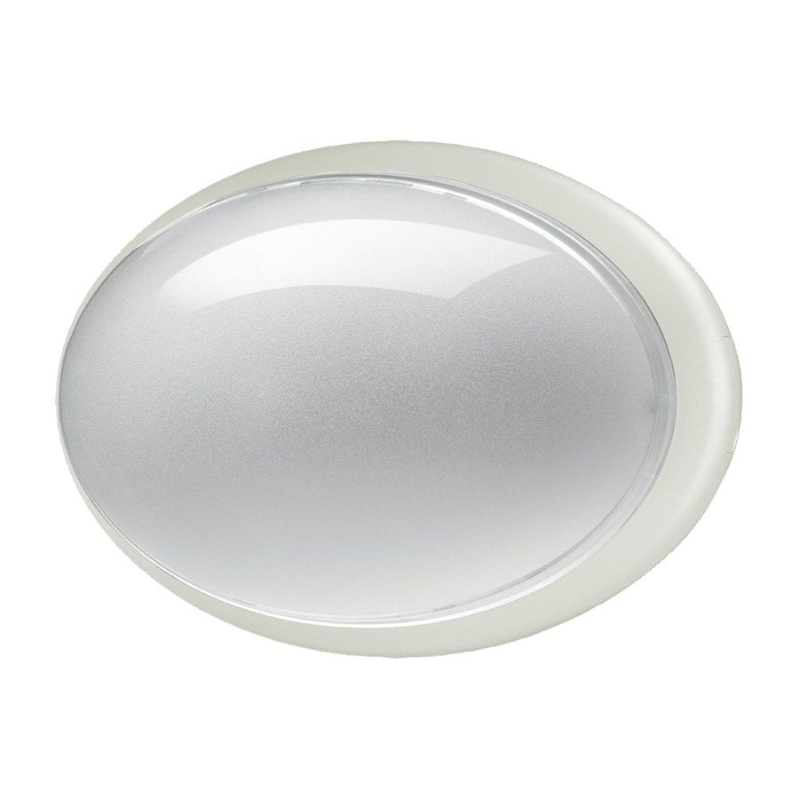 Eurofase Class 7.25-in H White Outdoor Wall Light
