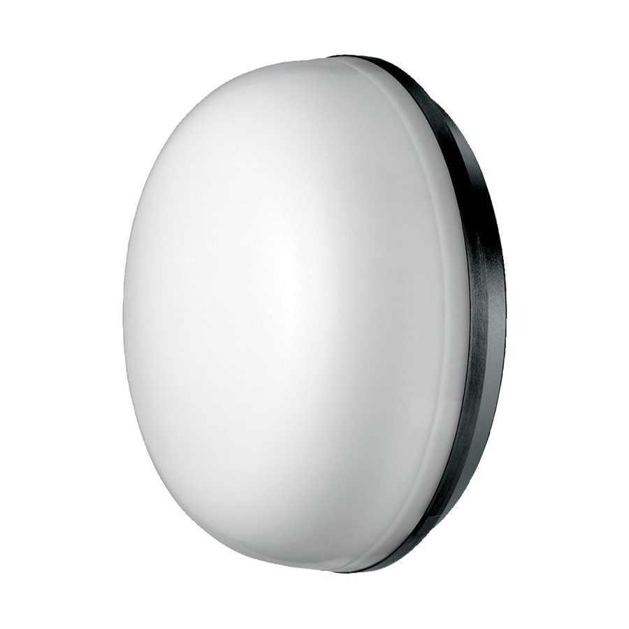 Eurofase Optima 10.43-in H Black Outdoor Wall Light