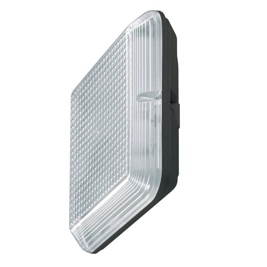 Eurofase Omnia 11.81-in H Black Outdoor Wall Light