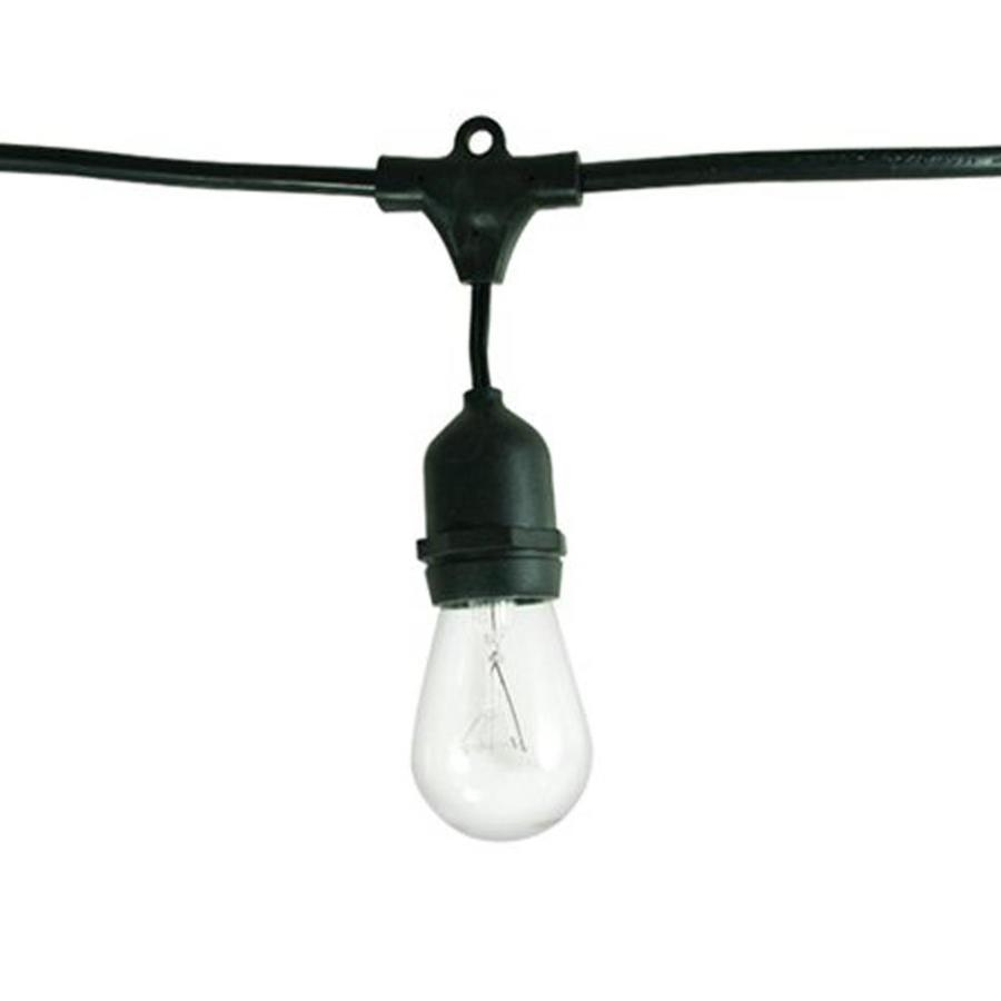 Shop cascadia lighting 48 ft black indooroutdoor plug in string cascadia lighting 48 ft black indooroutdoor plug in string lights aloadofball Choice Image