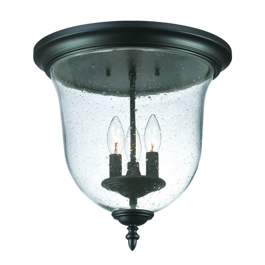 Acclaim Lighting Belle 14.25-in W Matte Black Outdoor Flush-Mount Light