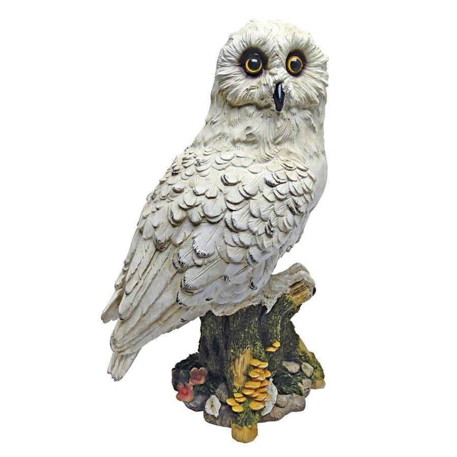 Design Toscano Mystical White Owl 14.5-in Animal Garden Statue