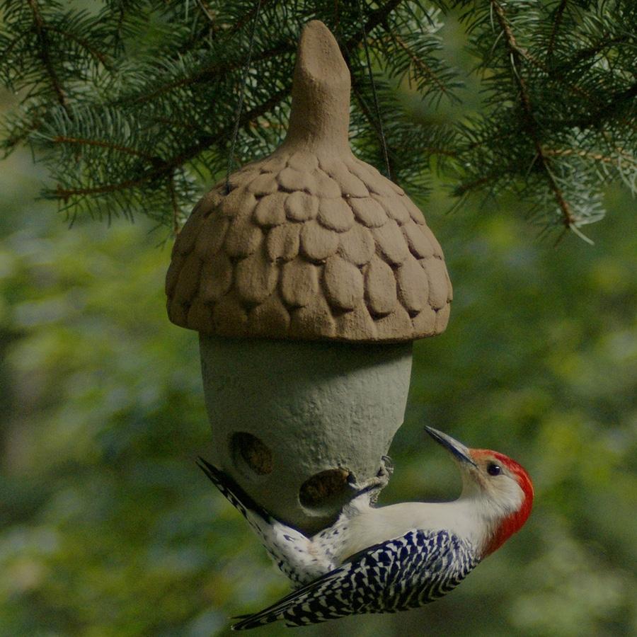 Shop acorn bird products cement green acorn suet feeder at for Acorn feeder