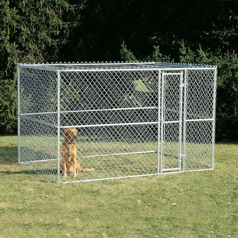 Shop Midwest Pets 10 Ft X 6 Ft X 6 Ft Outdoor Dog Kennel Gates At