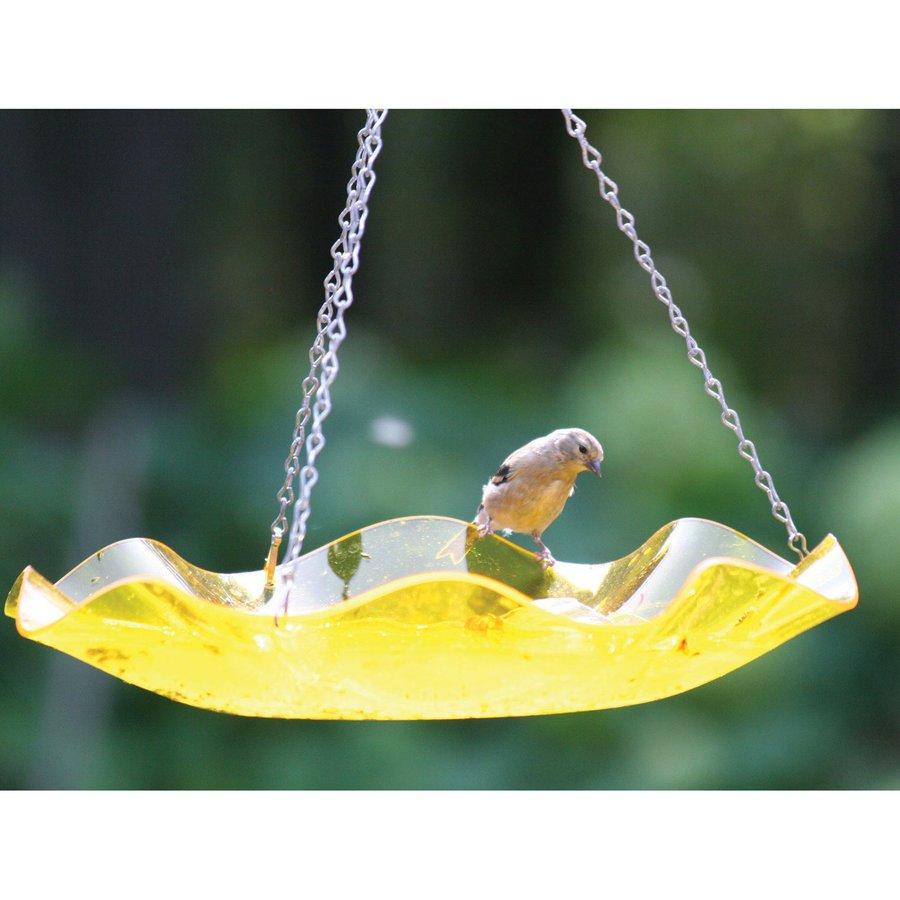 Birds Choice 5-in H 1-Tier Round Acrylic Birdbath