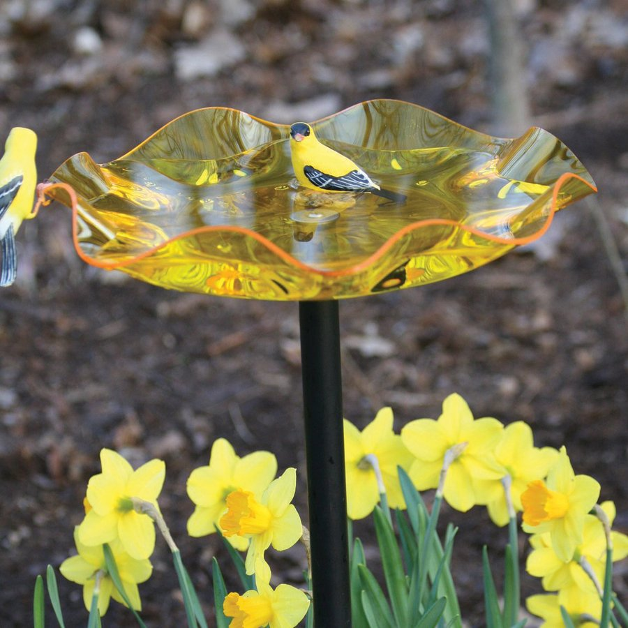 Birds Choice 24-in H 1-Tier Round Acrylic Birdbath