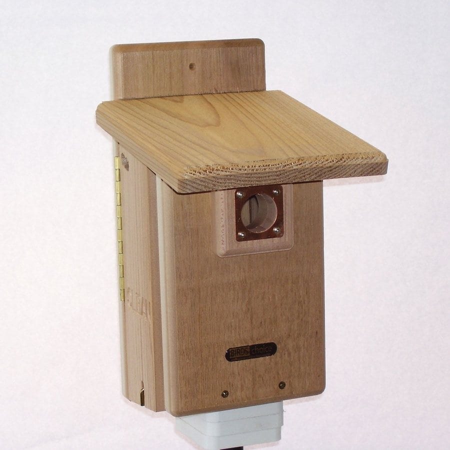 Birds Choice 8.75-in W x 15-in H x 7-in D Natural Bird House
