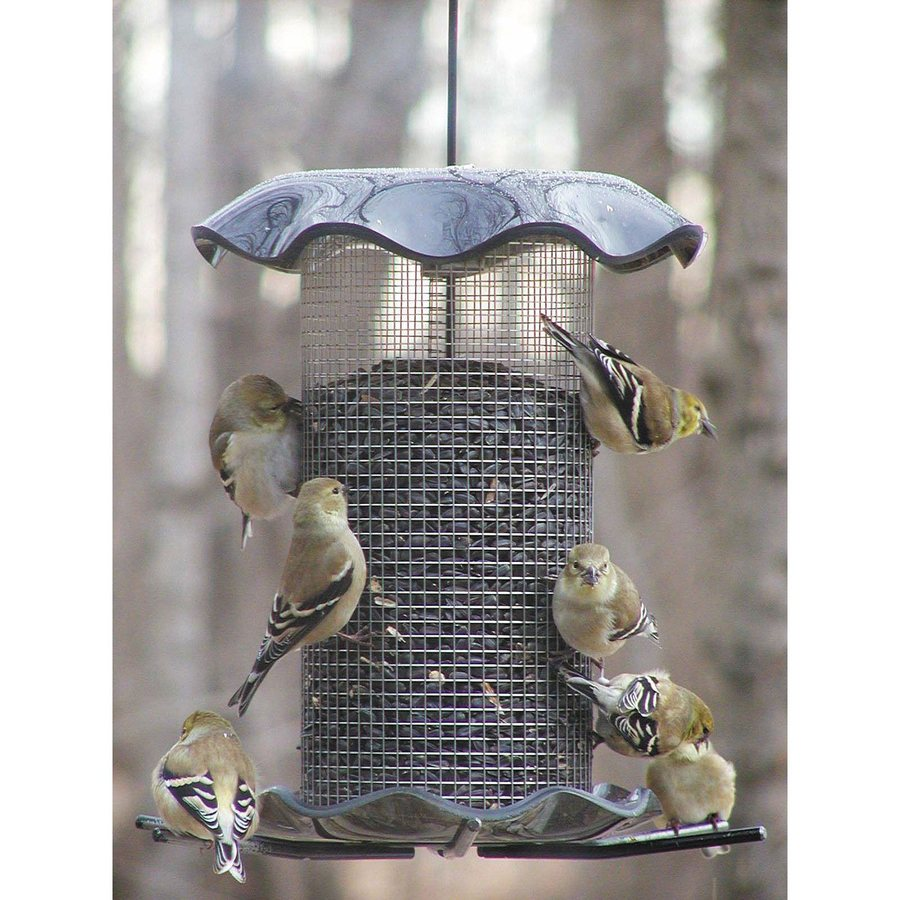 Birds Choice Steel Tube Bird Feeder