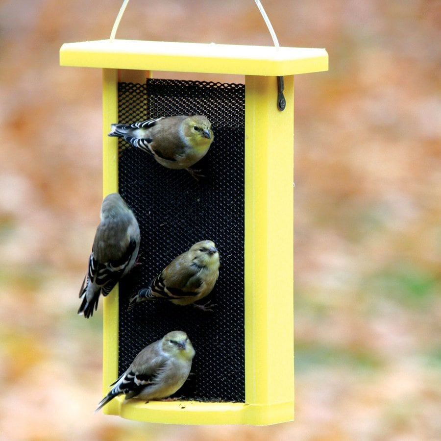 Birds Choice Recycled Plastic Bird Feeder