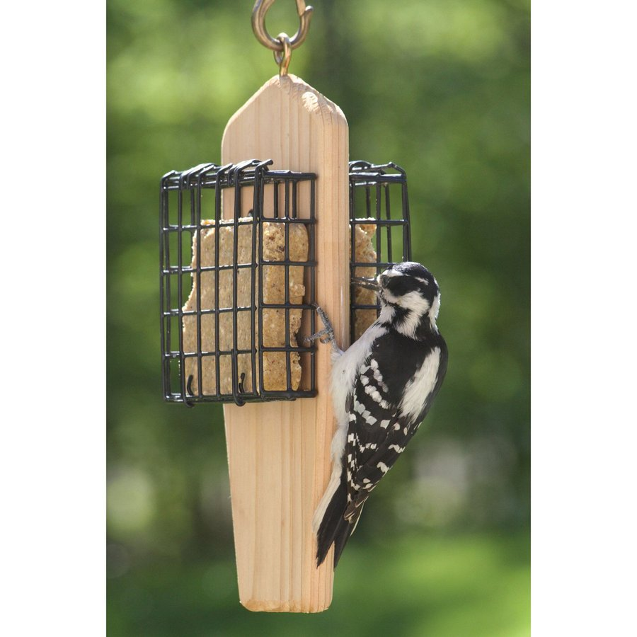 Birds Choice Cedar Two-Cake Cedar Suet Feeder