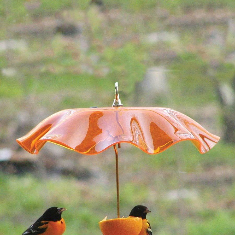 Birds Choice Orange Plastic Bird Feeder Weather Guard