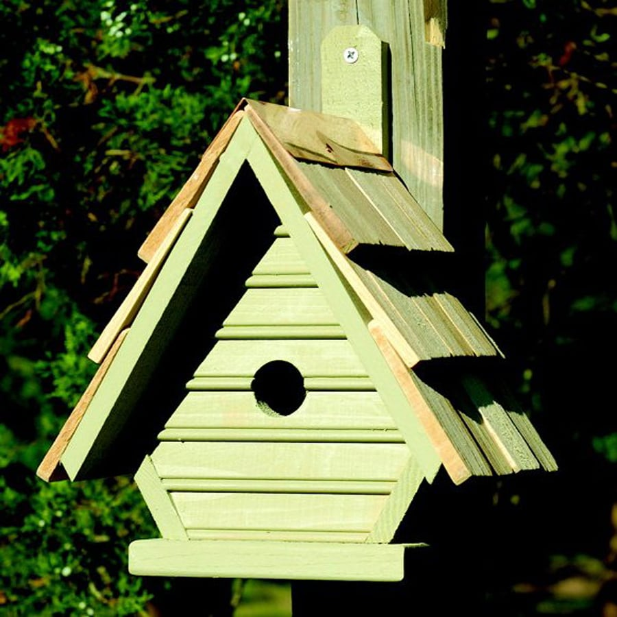 Heartwood 8-in W x 12-in H x 6-in D Celery Bird House