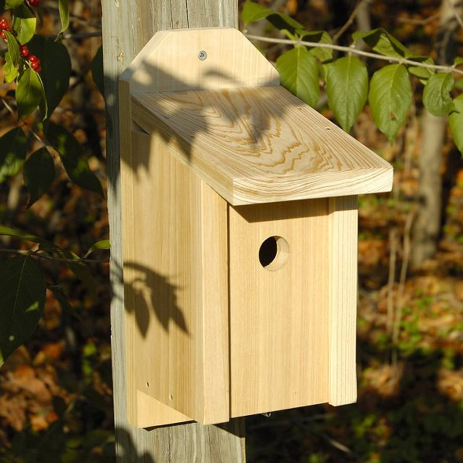 Heartwood 8-in W x 13-in H x 5.5-in D Unfinished Cypress Bird House