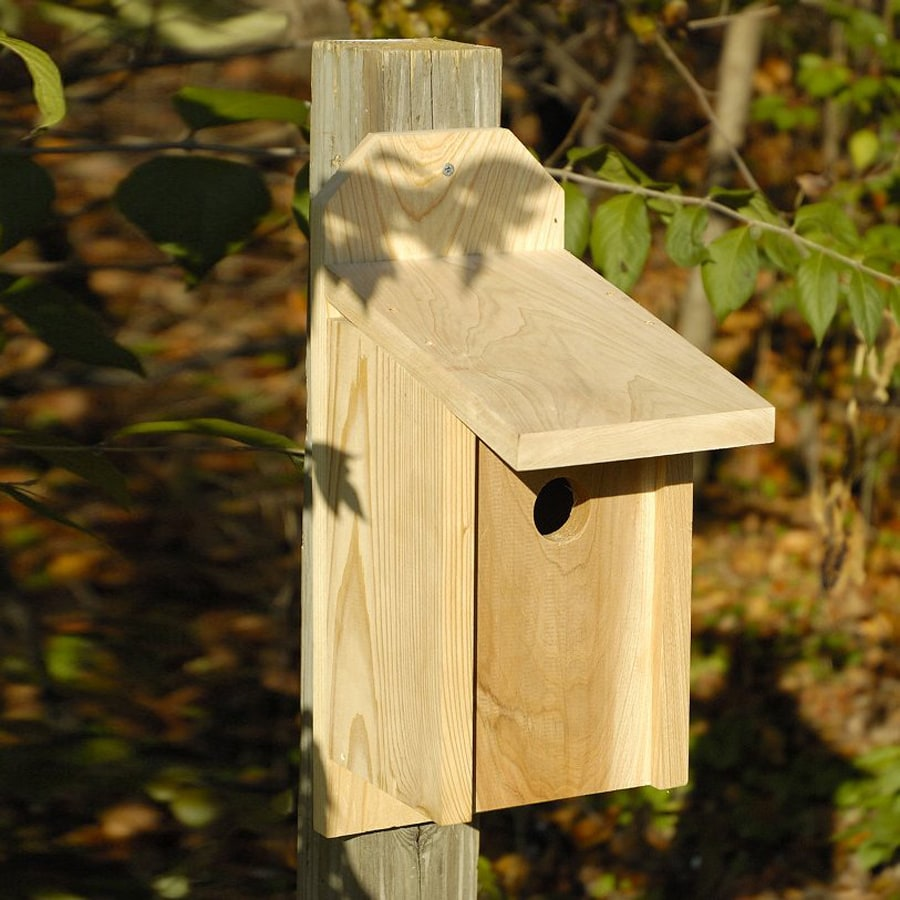 Heartwood 10-in W x 17-in H x 6.5-in D Unfinished Cypress Bird House