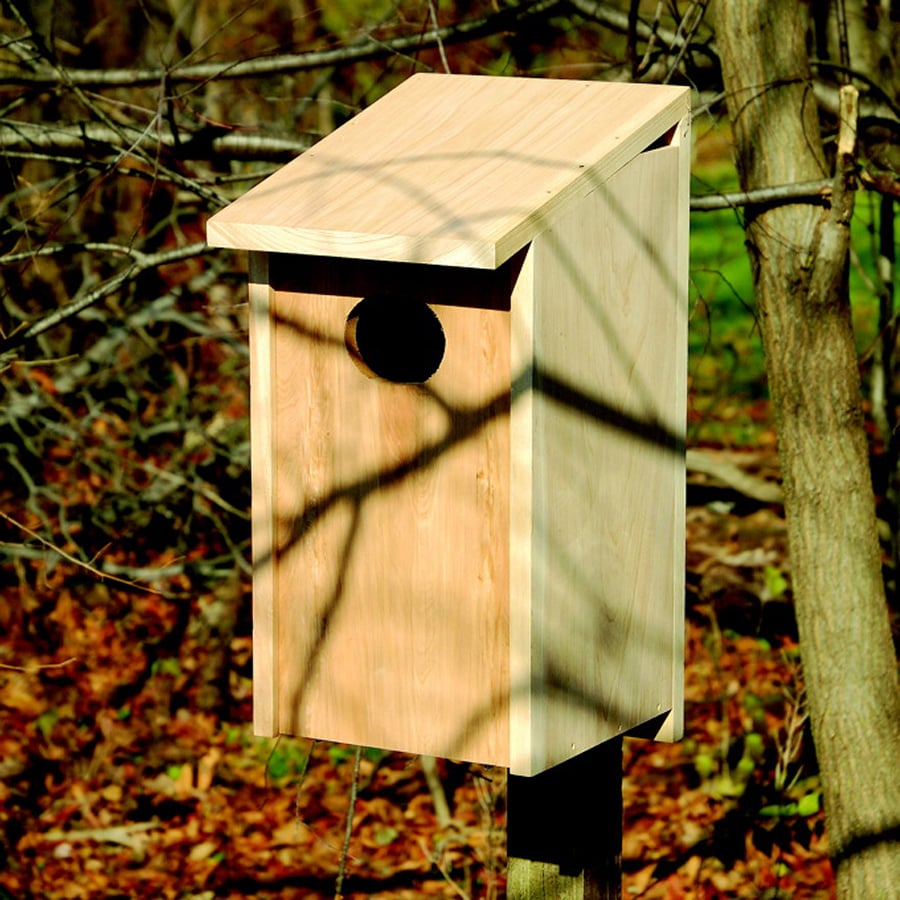 Heartwood 12-in W x 24.5-in H x 11-in D Unfinished Cypress Bird House