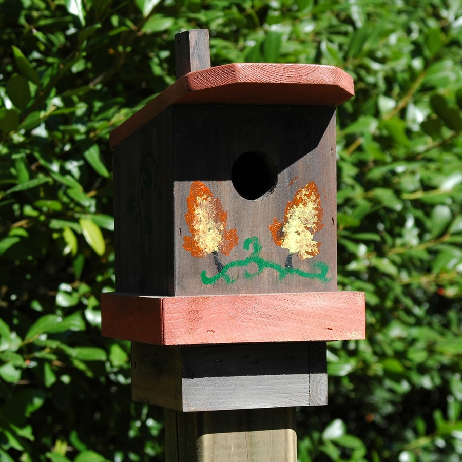 Wilderness Series Products 9-in W x 10-in H x 7-in D Rust/Brown Bird House