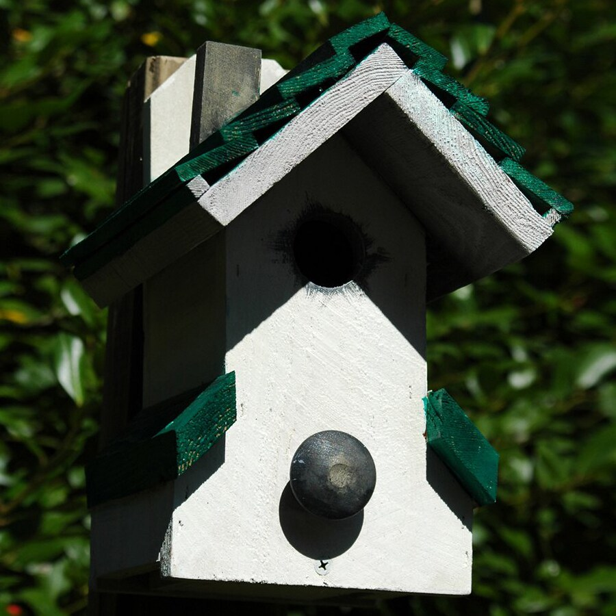 Wilderness Series Products 9-in W x 11-in H x 7-in D White/Green Bird House