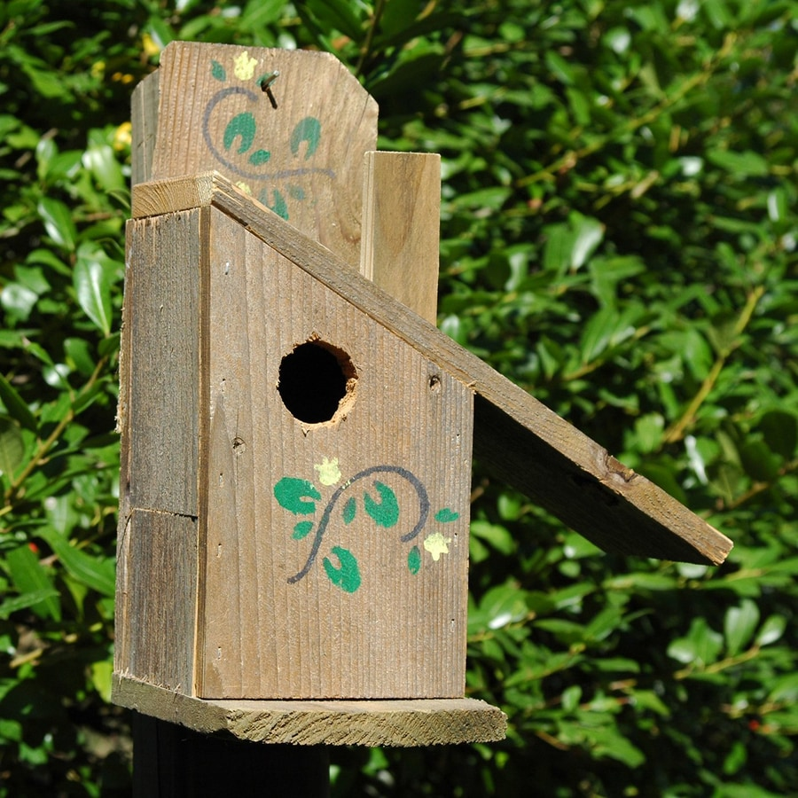 Wilderness Series Products 9-in W x 11-in H x 8-in D Brown/Green Bird House