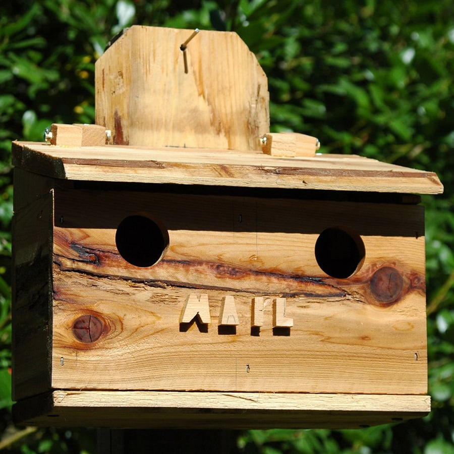 Wilderness Series Products 11-in W x 12-in H x 7-in D Natural Bird House