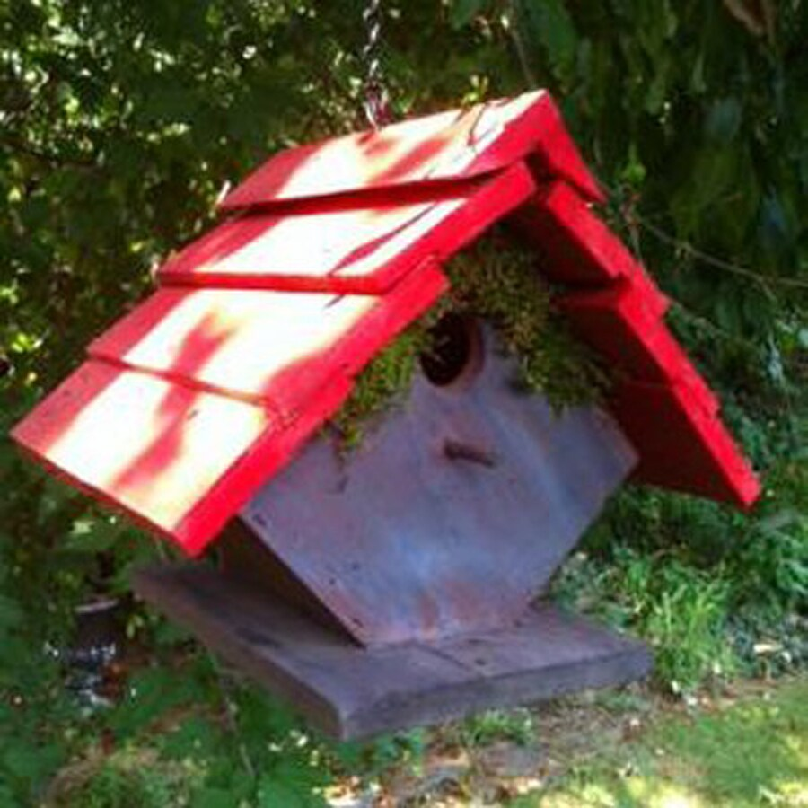 Wilderness Series Products 8-in W x 8-in H x 7-in D Red/Dark Lavender Bird House