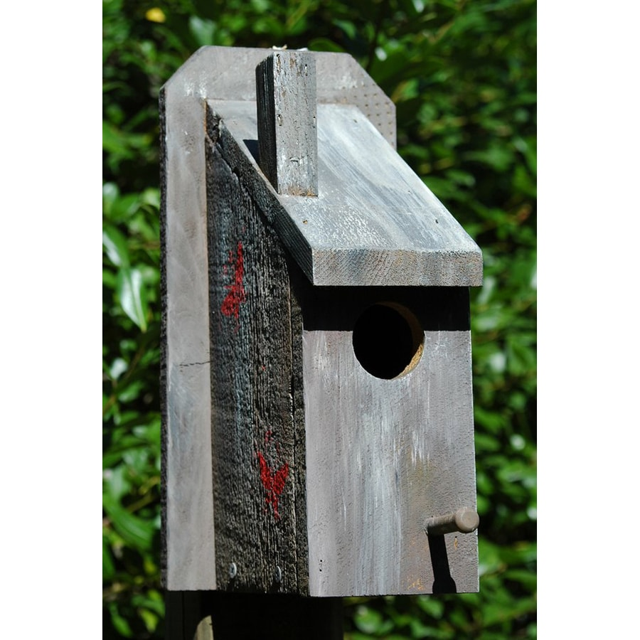 Wilderness Series Products 7-in W x 12-in H x 4-in D Light Taupe Bird House