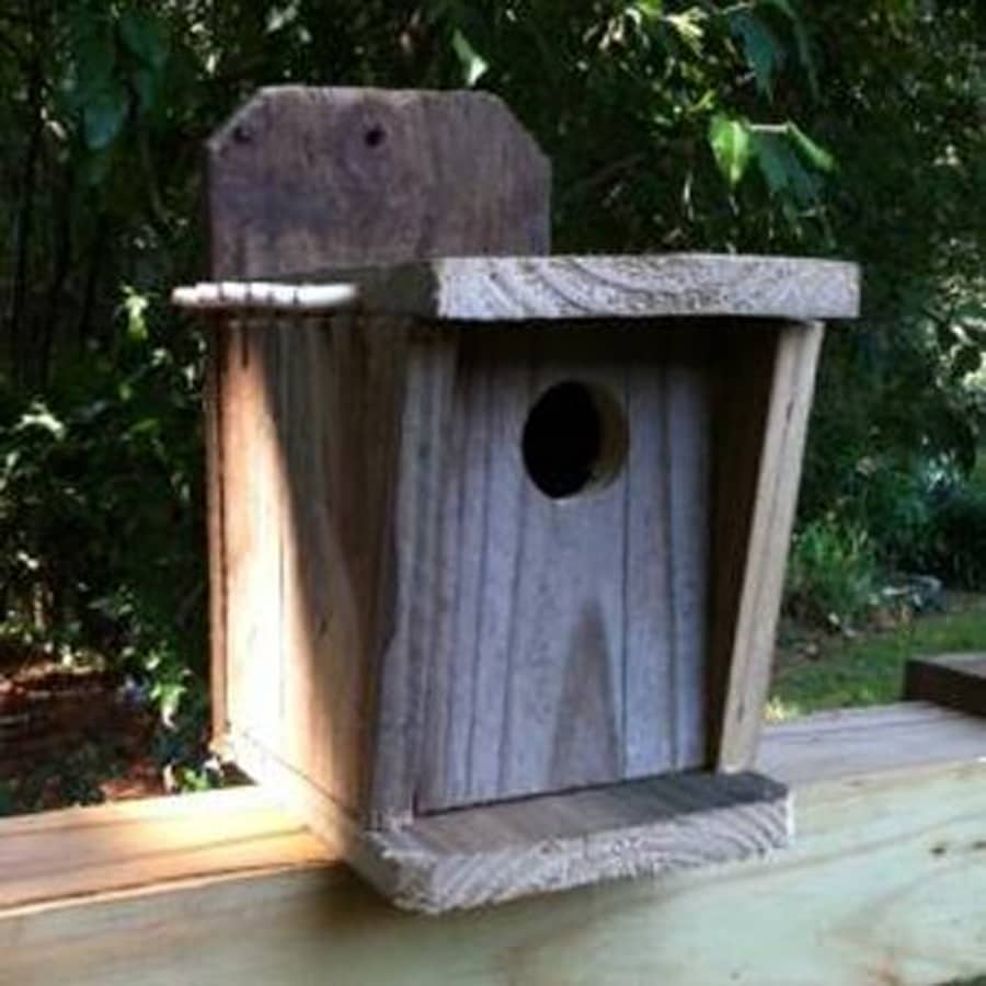 Wilderness Series Products 6-in W x 12-in H x 8-in D Natural Bird House