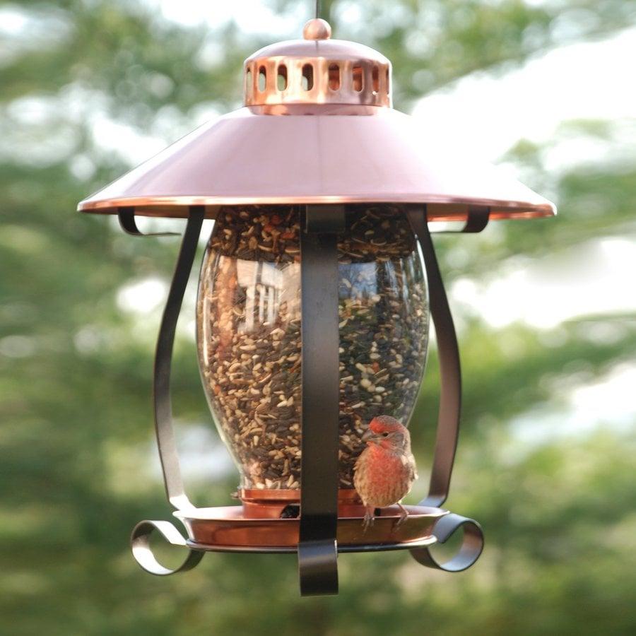 WoodLink Metal Lantern Bird Feeder