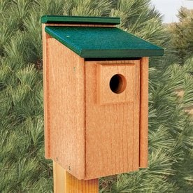 WoodLink 825 In W X 125 H 7 D Bird
