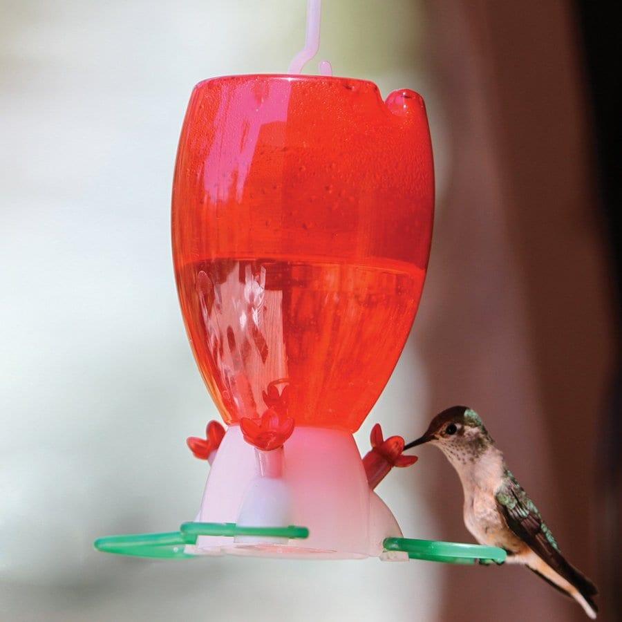 WoodLink Plastic Hummingbird Feeder