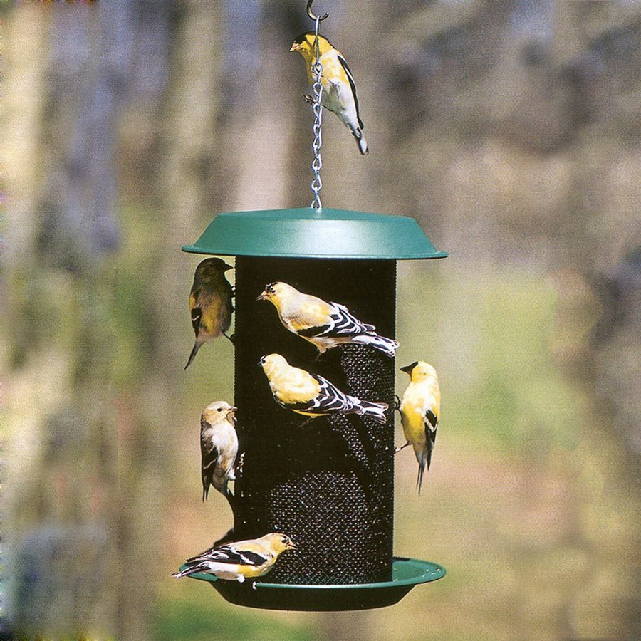 WoodLink Magnum Plastic Tube Bird Feeder