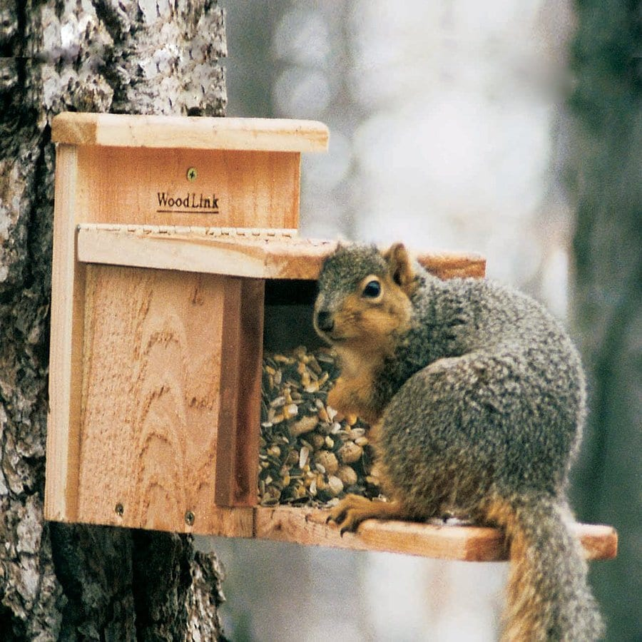 WoodLink Unfinished Cedar Lidded Box Squirrel Feeder