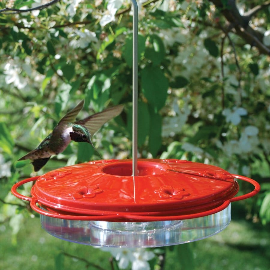 WoodLink Plastic Hummingbird Feeder