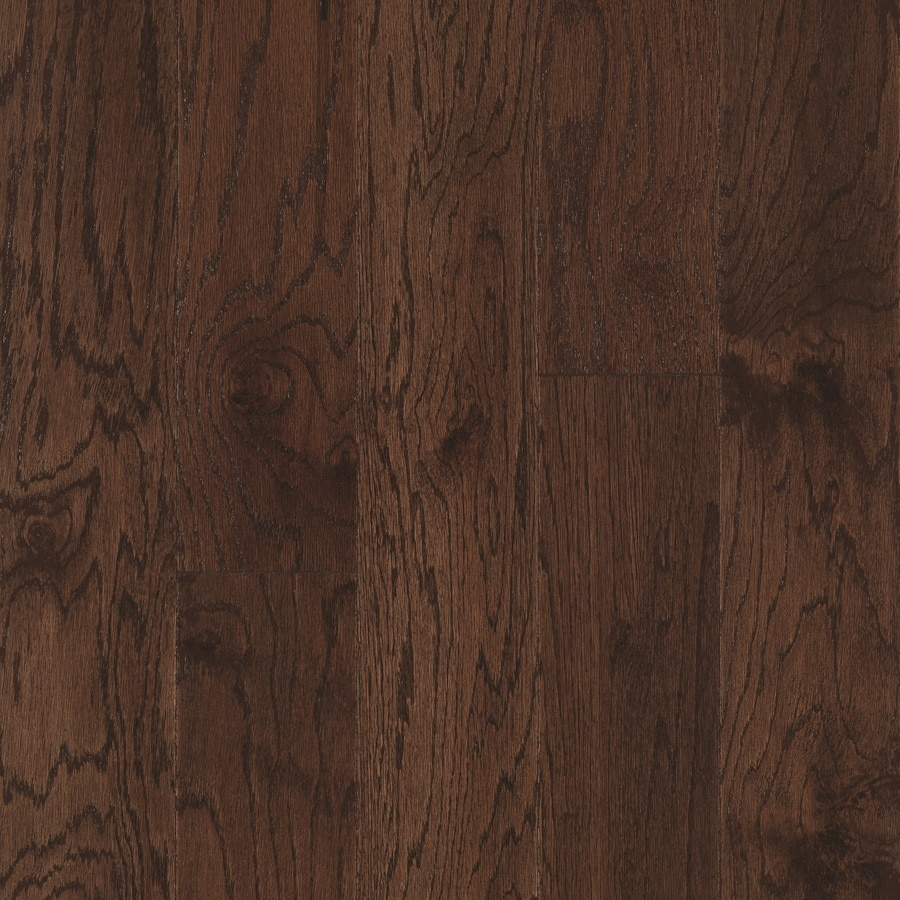 Shop Pergo Oak Hardwood Flooring Sample Chocolate Oak At