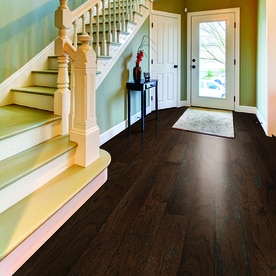 Shop Pergo Max 5 36 In Chocolate Oak Engineered Hardwood