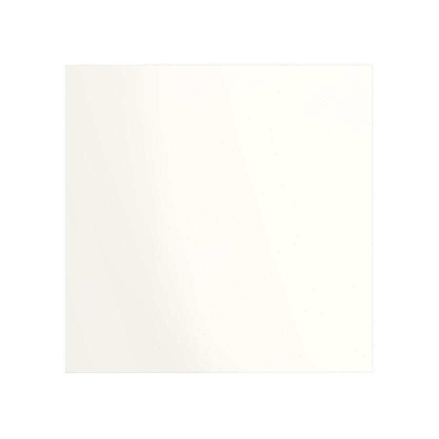 Transolid Decor White Shower Wall Surround Back Wall Panel (Common: 0.25-in x 60-in; Actual: 60-in x 0.25-in x 60-in)
