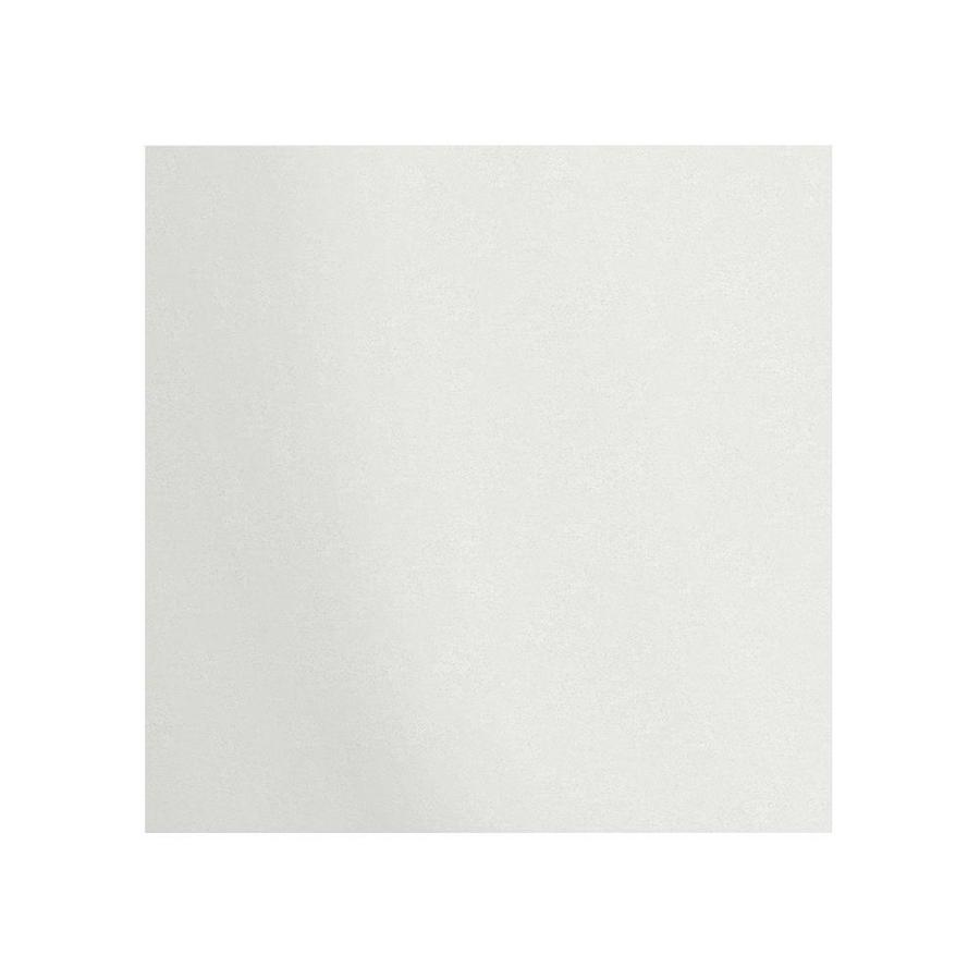 Transolid Decor Matrix White/Speckled White Shower Wall Surround Back Panel (Common: 0.25-in x 60-in; Actual: 60-in x 0.25-in x 60-in)