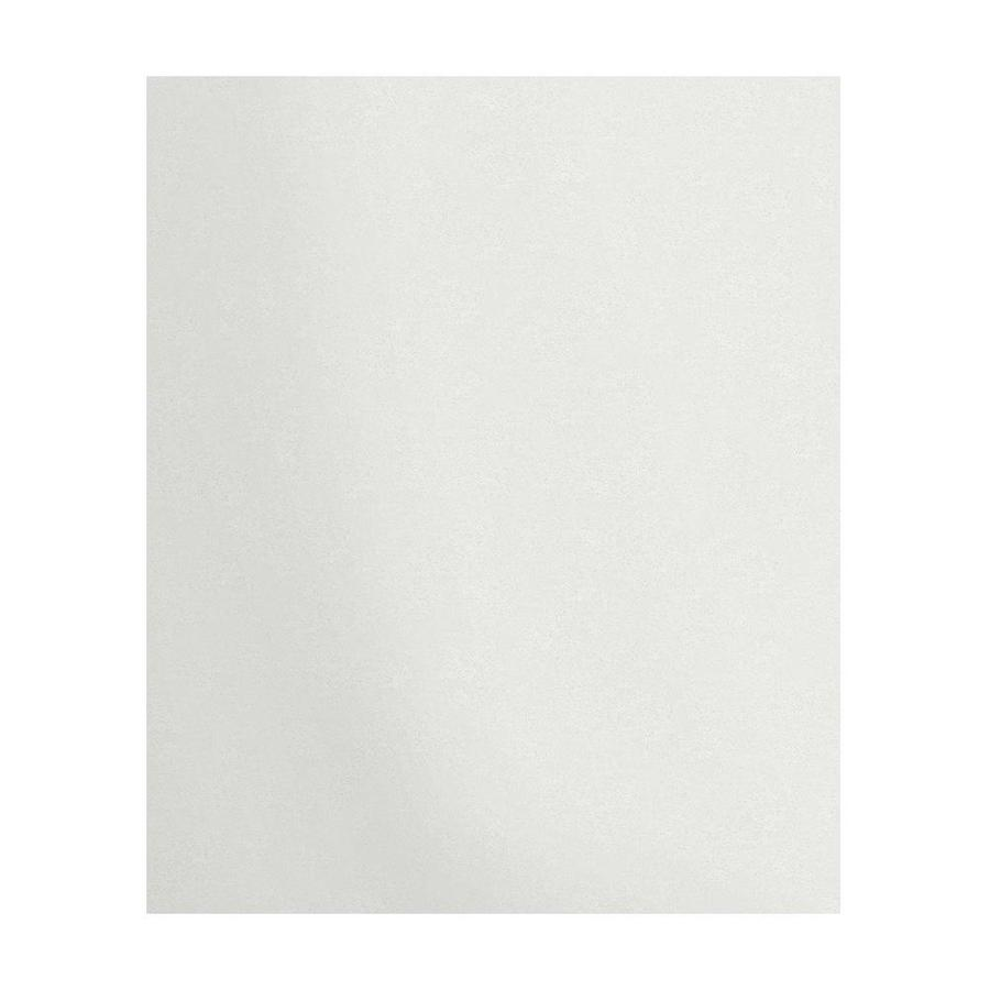 Transolid Decor Matrix White Shower Wall Surround Back Wall Panel (Common: 0.25-in x 60-in; Actual: 72-in x 0.25-in x 60-in)