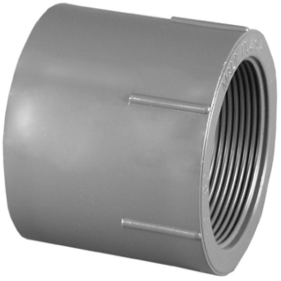Shop charlotte pipe in dia pvc sch adapter at lowes
