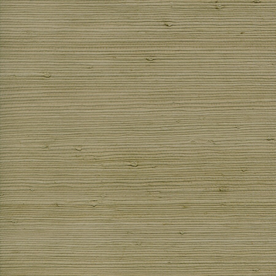 Green Grasscloth Wallpaper: Shop Allen + Roth Sage Green Grasscloth Unpasted Textured