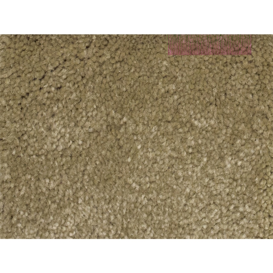 STAINMASTER PetProtect Purebred Futurity Textured Interior Carpet