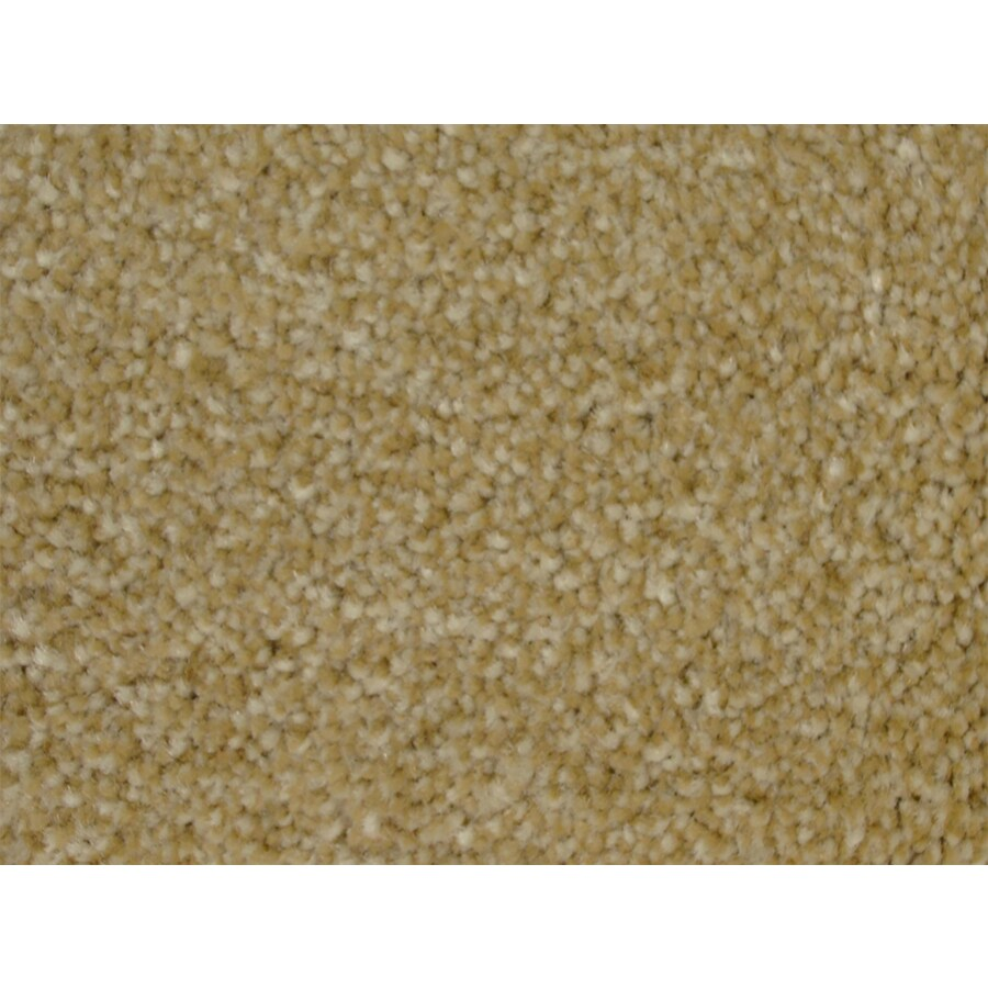STAINMASTER PetProtect Purebred Slicker Textured Indoor Carpet