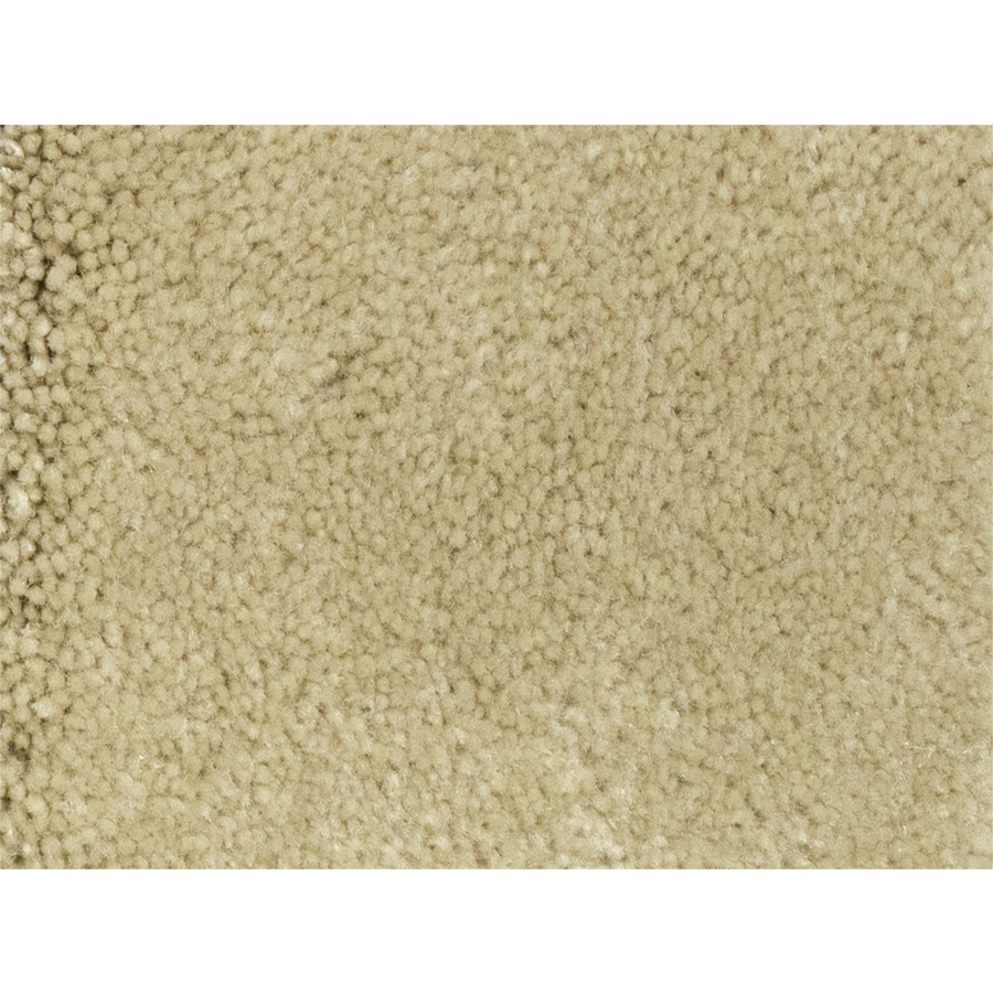 STAINMASTER PetProtect Purebred Major Textured Indoor Carpet