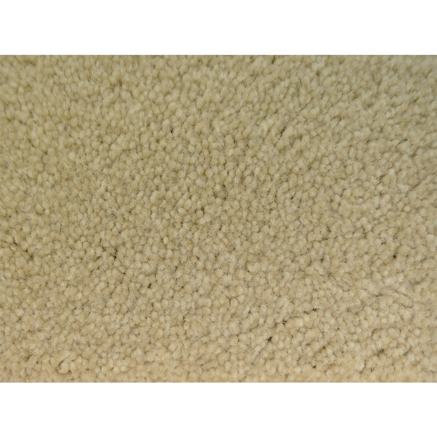 STAINMASTER Petprotect Purebred Specialty Textured Interior Carpet
