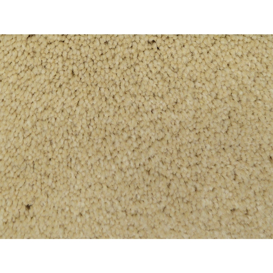 STAINMASTER PetProtect Purebred Winner Textured Interior Carpet