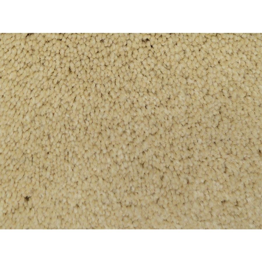 STAINMASTER PetProtect Purebred Winner Textured Indoor Carpet