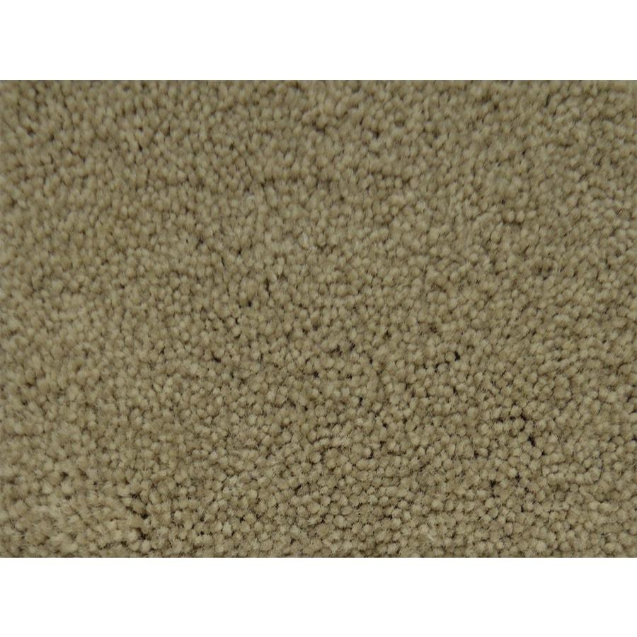 STAINMASTER PetProtect Purebred Premium Textured Interior Carpet