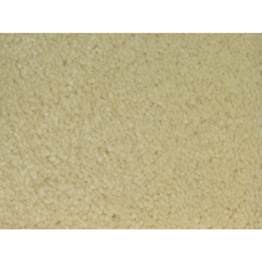 STAINMASTER PetProtect Purebred Lead Textured Interior Carpet