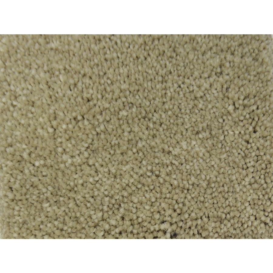 STAINMASTER PetProtect Purebred Fly Ball Textured Interior Carpet