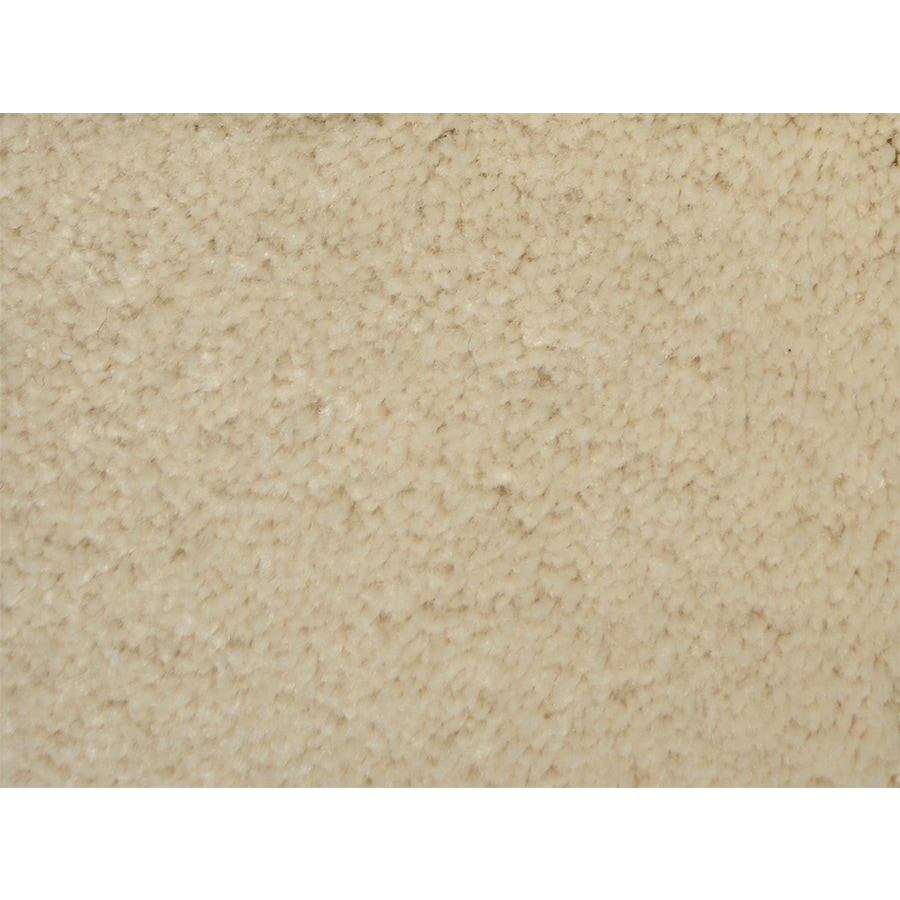 STAINMASTER PetProtect Purebred Companion Textured Indoor Carpet